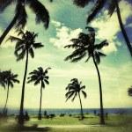 Tropical beach background — Stock Photo