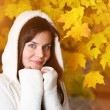 Beautiful young woman in autumn park — Stock Photo #32421393