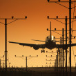 Airplane landing in airport at sunset — ストック写真