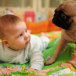 Baby and dog — Stock Photo