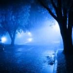 Foggy street at night — Stock Photo