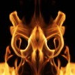 Fire flames — Stock Photo #32424093