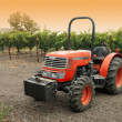 Small red tractor in vineyard — Stok fotoğraf