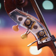 Double bass detail — Stock Photo
