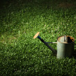 Watering can on grass — Stock Photo