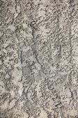 Weißer stuck wand textur hintergrund — Stockfoto
