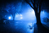 Foggy street at night — Stock Photo