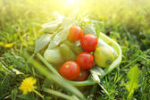 Organic food outdoors — Stock Photo