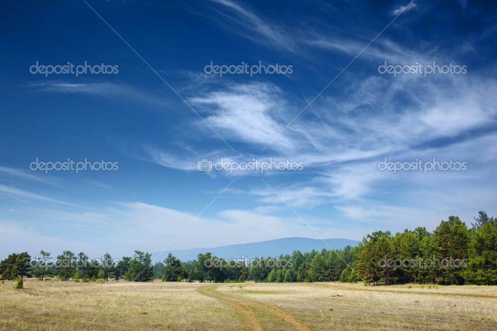 美丽的夏天风景与蓝蓝的天空– 图库图片