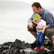 Dad with little son walking outdoors at ocean — Stock Photo