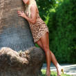 Blond leaning on palm tree — Stock Photo