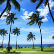 Beautiful tropical beach in Hawaii — Stock Photo