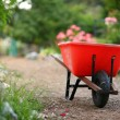Wheelbarrow in a blooming garden — Stock Photo