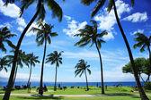 Beautiful tropical beach in Hawaii — Stock Photo