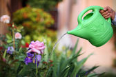 Hand holding watering can watering flowers. — Stock Photo