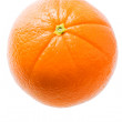 Fresh Orange — Foto Stock