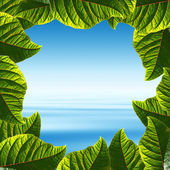 Frame made leaves with tropical ocean view — Stock Photo