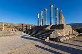 Volubilis.Morocco .Unesco heritage — Stock Photo