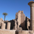 Foto Stock: Temple of Amon. Karnak. Egypt