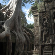 Angkor Wat. Siem Reap. Cambodia — Stock Photo