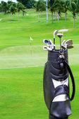 сумка для гольфа с пальмами на гольф — Стоковое фото