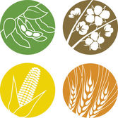 Soybeans, Cotton, Corn and Wheat — Stock Vector