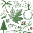 Greenery Collection — Stock Vector