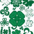 Shamrock Collection — Stock Vector