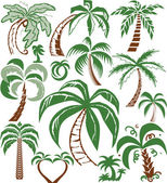 Palm Tree Collection — Stock Vector