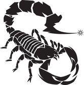Black Scorpion — Stock Vector