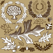 Oak Leaf Collection — Stock Vector