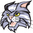 Vector de stock : Wildcat