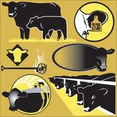 Clipart de bovins — Vecteur