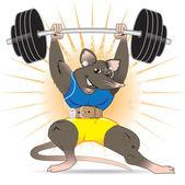 Gym Rat — Stock Vector