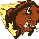 Buffalo Thunder — Stock Vector #34562127