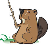 Beaver with Pointer Stick — Stock Vector