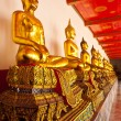Stock Photo: Row of sitting buddha