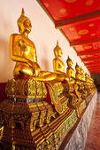 Row of sitting buddha — Stock Photo