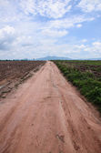 Country road in thailand — Stock Photo