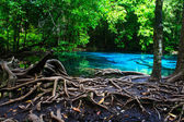 Emerald Pool. — Stock Photo