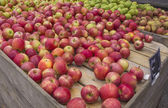 Apple and Pear Stand at a Local Market — Stock Photo