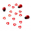 Lady bugs and hearts for Valentines Day — Stock Photo