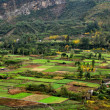 SichuProvince, China: Farmlands in Jianjiang River Valley — Stock Photo #34917273