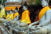 Ayutthaya, Thailand: Wat Chai Wattanaram Buddhas — Stock Photo