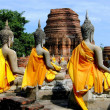 Ayutthaya, Thailand: A Row of Buddha Statues at Wat Yai Chai Mongkhom — Stock Photo