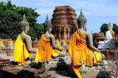 Ayutthaya, Thailand: A Row of Buddha Statues at Wat Yai Chai Mongkhom — Stock Photo