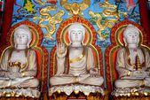 Shi Fang, China: Buddha Figures at the Luo Han Temple — Stock Photo