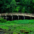 Stock Photo: Concord, MA: Old North Bridge