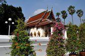 Ayutthaya, Thailand: Wat Suwan Dararam Ubosot — Stock Photo