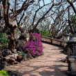 Phetchaburi, Thailand: 1859 Royal Palace Terrace Garden — Stock Photo